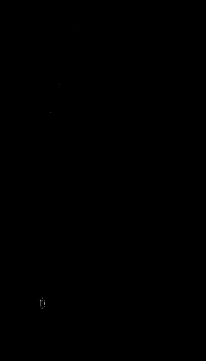 beaktor_lateral dir lineas